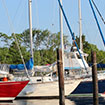 Dandy Haven Marina